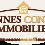 Affichage Dynamique Pixel Impact Ecrans Haute Luminosité Cannes Conseil Immobilier